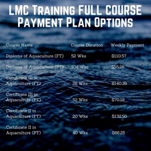 Payment Plan Options Full Course